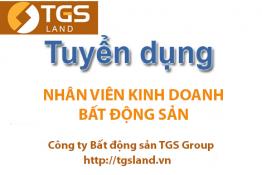 Tuyển dụng nhân viên Kinh doanh Bất động sản tháng 8 - TGS GROUP